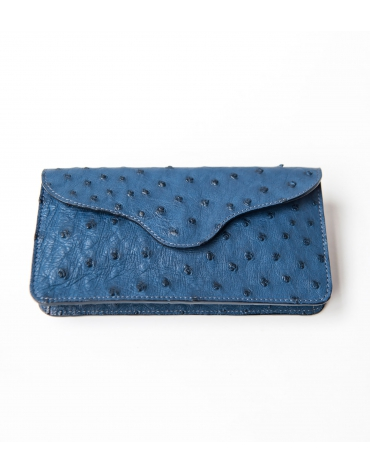 Escapade Evening Clutch