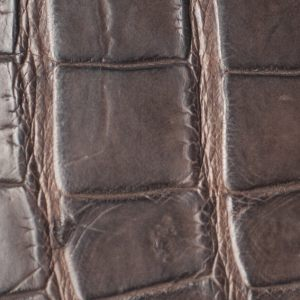 Crocodile mat, Marron