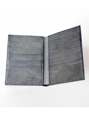 Passport and cards holder